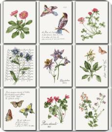 Tafelzeil - Botanische tuin