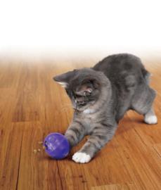 KONG Treat Ball klein