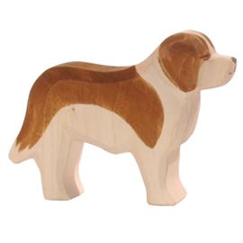 Ostheimer - Hond St. Bernard - 10441