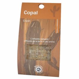 Harswierook Copal - 30 gram