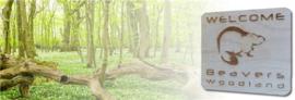 Beavers Woodland - Kaart - Kusje er op? (Beterschap)