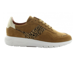 Tango sneakers | Haley Cognac Animal print