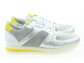 AQA sneakers | Dragon Argento