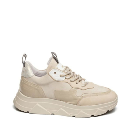 Steve Madden sneaker | Pitty Nude Multi
