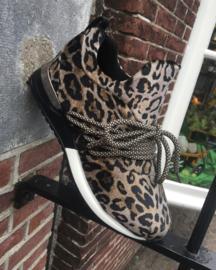 La strada sneaker | Leopard Velvet