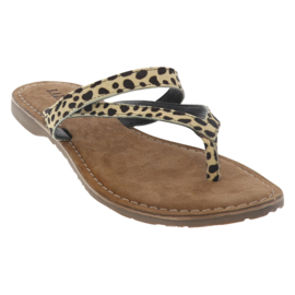 Lazamani slippers   Dalmatian
