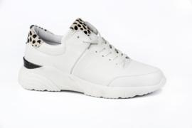 Pitt sneakers | White Spot