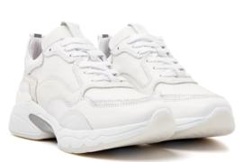 Via Vai sneakers | Zaira Tortuga Combi Bianco