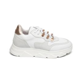 Steve Madden sneaker | Picante White