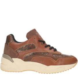 Bullboxer sneaker | Cognac
