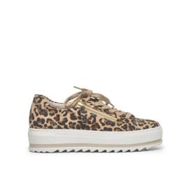 Gabor sneakers | Leopard