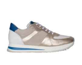 AQA Shoes | Champ Dallas White
