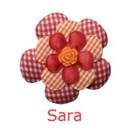 PADDY SARA