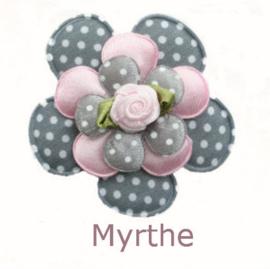 PADDY MYRTHE