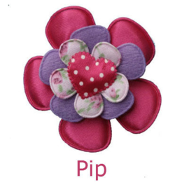 PADDY PIP