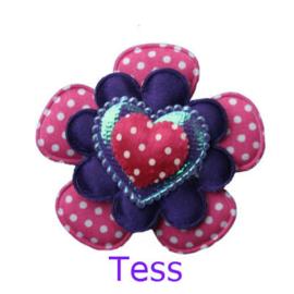 PADDY TESS