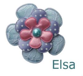 PADDY ELSA