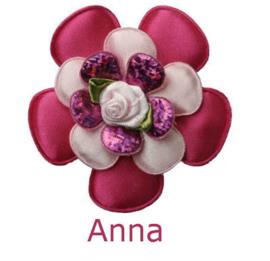 PADDY ANNA