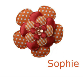 PADDY SOPHIE