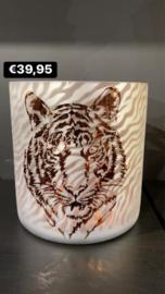 Windlicht tijger