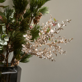 Sparkling Branch