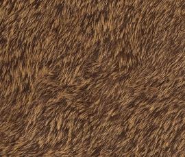 Rasch Black Forest - bont behang 514520