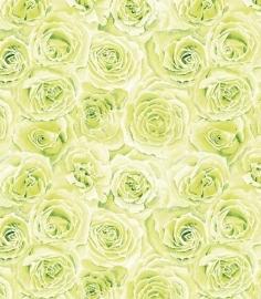 Bloemen rozen Vlies behang groen 6440 -03 Juvita
