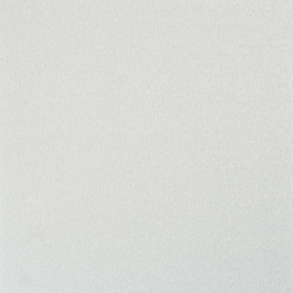 BN Fleurie - uni effe behang 48416