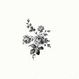 Esta Belle Rose 115718