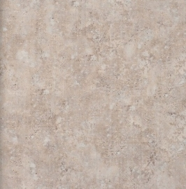 BN Eye - betonlook behang 47227