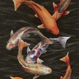 Koi karper vissen behang Natural Instinct 781014