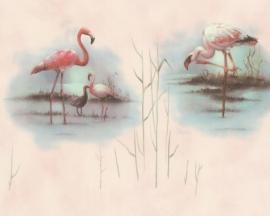 dieren vogel flamingo behang 6791-16