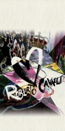 ROBERTO CAVALLI RC 12049