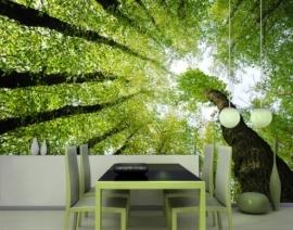 Mantiburi Fotobehang bos bomen