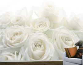 Mantiburi Fotobehang Wedding Roses 17