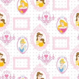 Kids@Home Disney Princess Frames behang DF71799 .