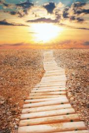 """Jaartraining  """" Het pad naar bewustzijn """""""
