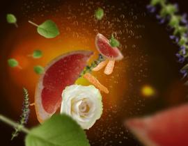 Parfumverspreider Petillance Exquisite  200ml Navulling