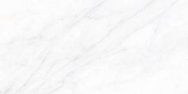 Wandtegels Neptune glans 30x60 rett