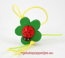 Gelukslieveheesrbeestje op blad