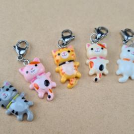 Stekenmarkeerder katje