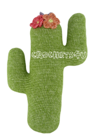Joekedoe cactus