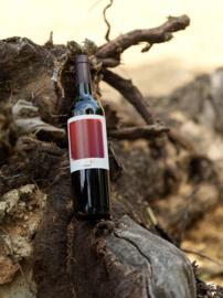 Tempranillo, Syrah, Cabernet Sauvignon - Cala 1, Tinedo - bio