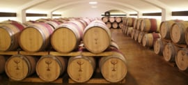 Feteasca Neagra -  Purpura Valahica, wijnhuis Davino - Roemenie