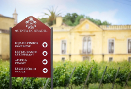 Touriga Nacional, Petit Verdot, Syrah - Castelo do Sulco Tinto - Lissabon - Quinta do Gradil