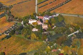 Montepulciano - d'Abruzzo DOC Barone Cornacchia Bio
