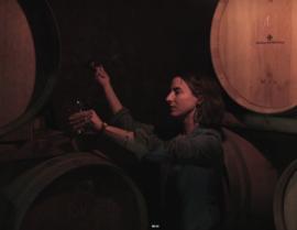 Grenache, Syrah - La Matine,  Domaine Singla Cotes du Roussillon Bio