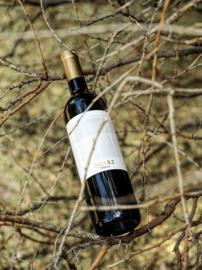 85% Tempranillo, 10% Syrah, 5% Cabernet Sauvignon - Cala 1, Tinedo - bio