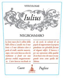 Negroamaro - Iulius - Ionis - Salento IGP