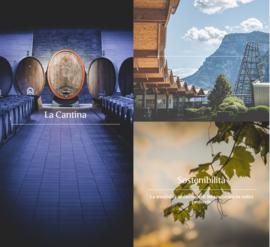 Merlot - Terre del noce - Dolomiti- Cantina Mezzacorona